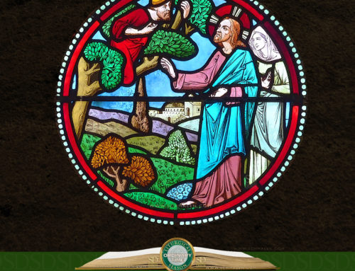 Tuesday of the Thirty-third Week in Ordinary Time
