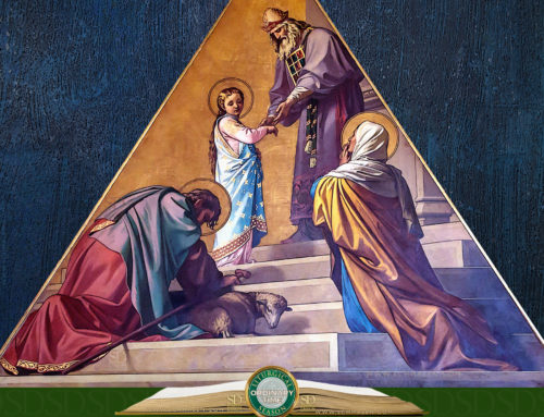 Memorial of the Presentation of the Blessed Virgin Mary